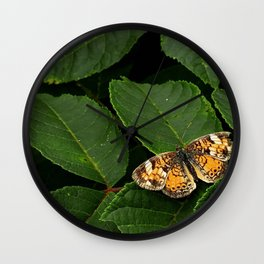 Butterfly roosting on leaf Wall Clock