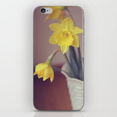 Thoughts of Spring iPhone & iPod Skin