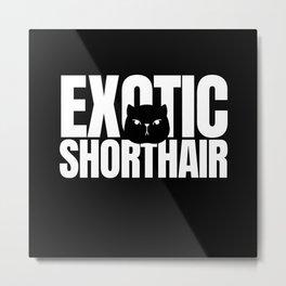 Exotic Shorthair Lover Metal Print