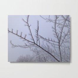 Frozen Fog Metal Print