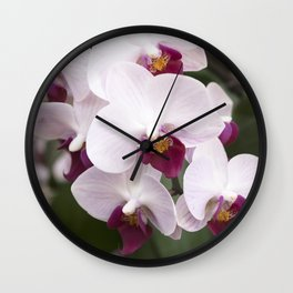 Longwood Gardens Orchid Extravaganza 4 Wall Clock