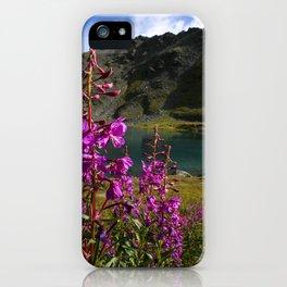 Fireweed - Hatcher Pass Alaska iPhone Case