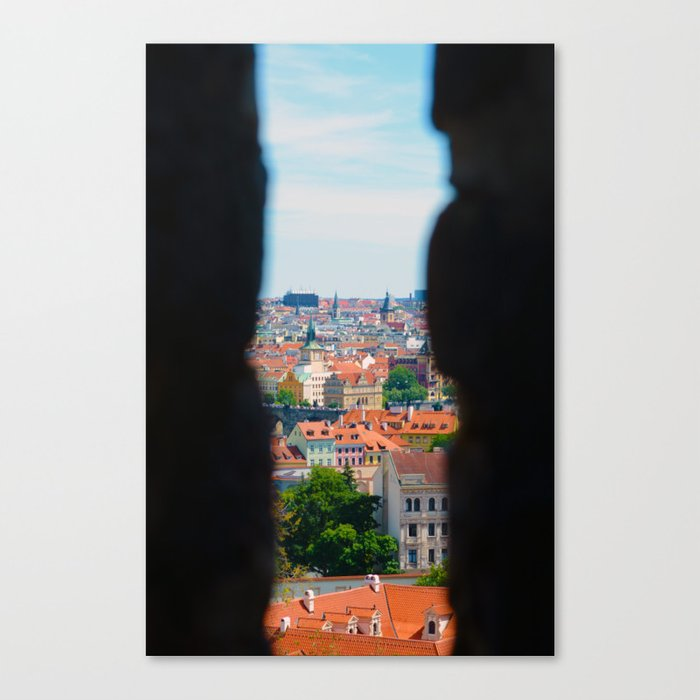A peek through my eyes Canvas Print