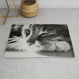 Portrait of a cat in black and white Rug