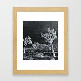Joshua Tree InfraRed by CREYES Framed Art Print