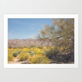 Joshua Tree Wildflowers Art Print