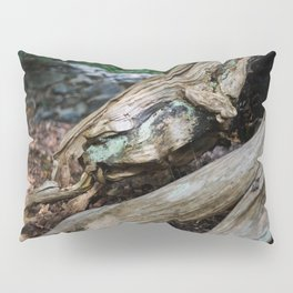Jewel in the Wood Pillow Sham