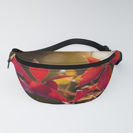 Indian Summer I Fanny Pack