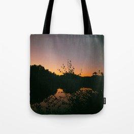 Last Remaining Light (Holme Fen) Tote Bag