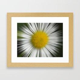 Floral Zoom Framed Art Print