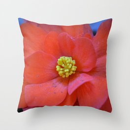 F l o u w e r Throw Pillow