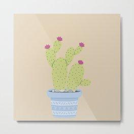 Suculents Cactus Plants Metal Print