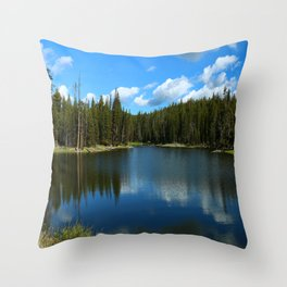 Tranquil Morning At Gull Point Drive Throw Pillow
