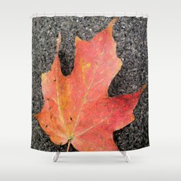 Water color of a sugar maple leaf Shower Curtain