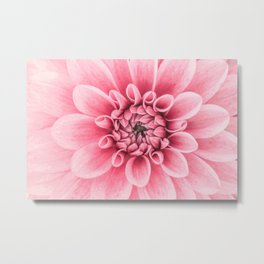 Blossoming Romance Metal Print