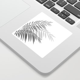 Leaves of palm tree leaves Sticker