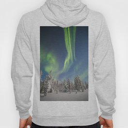 Norwegian forest Hoody