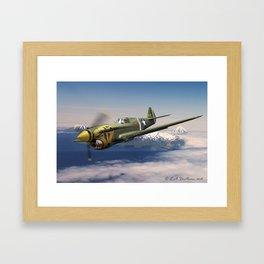 Aleutian Tiger Framed Art Print