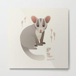 Leadbeater Possum, Animal of Victoria, Australia Metal Print