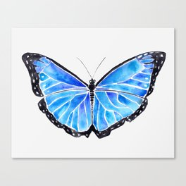 Big Blue Butterfly Watercolor Canvas Print