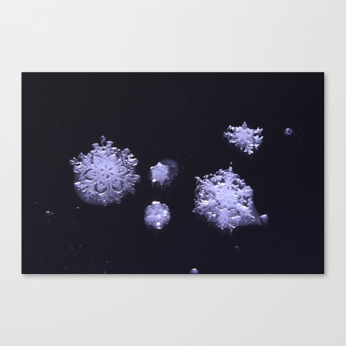 an ephemeral perspective Canvas Print