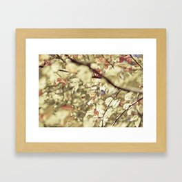 Gold Tree Leaves 01 Framed Art Print