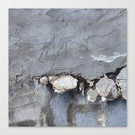 She feels, peels Canvas Print