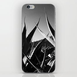Maguey y Sotol. iPhone Skin