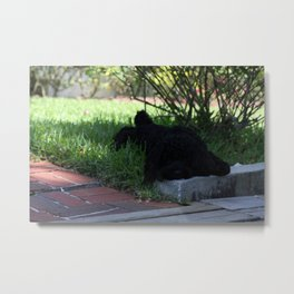 Little Poser Metal Print