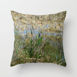 Beauty in the Everglades Throw Pillow
