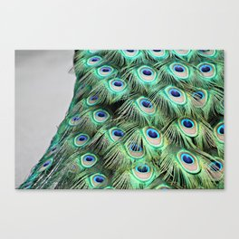 LIGHT AS A BIRD Canvas Print