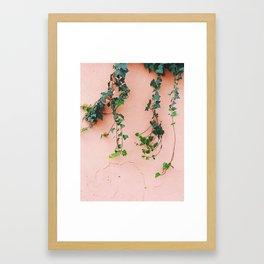 plants over pink Framed Art Print