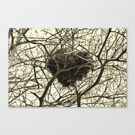 Heart-Shaped Nest Canvas Print