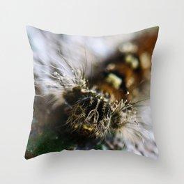 Lymantria dispar dispar Throw Pillow