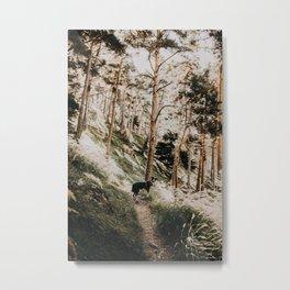 WILD TULA /// Gran Bosco di Salberstrand Metal Print