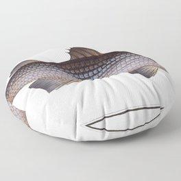 Mullet (Mugil cephalus) from Ichtylogie ou Histoire naturelle generale et particuliere des poissons Floor Pillow