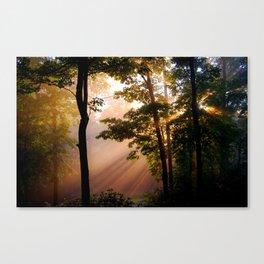 Forest Light Fine Art Print, Magical Forest, Nature Print Canvas Print