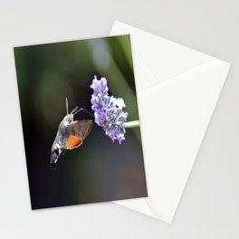 Saveur Lavande Stationery Cards