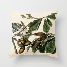 Yellow-billed Cuckoo, Birds of America by John James Audubon Throw Pillow