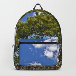 Pine Tree on the Ground of the Mount Etna Backpack