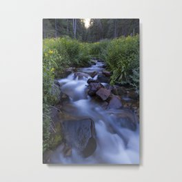 Rocky Mountain h2o Metal Print