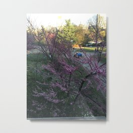 Afternoon in Central Park Metal Print