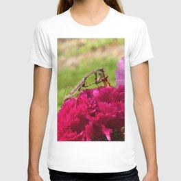 Praying Mantis Dining on a Moth T-shirt