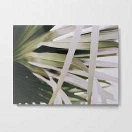 Palm Tree Metal Print