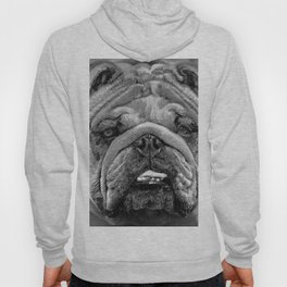 Bulldog Black and White Hoody