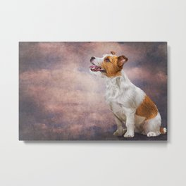 Jack Russell Terrier. Drawing, illustration funny dog Metal Print