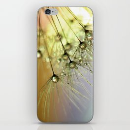 Dandelion & Droplets iPhone Skin