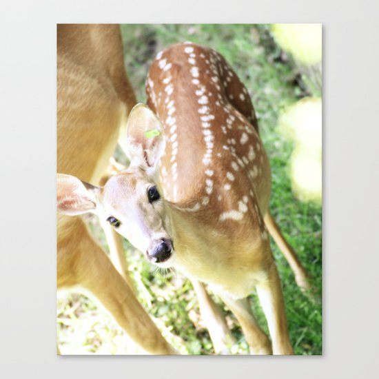 Spotted at the Zoo Canvas Print