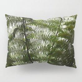 Fern Wall Pillow Sham