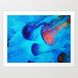 Watch the Flow of the Jelly Glow  Art Print